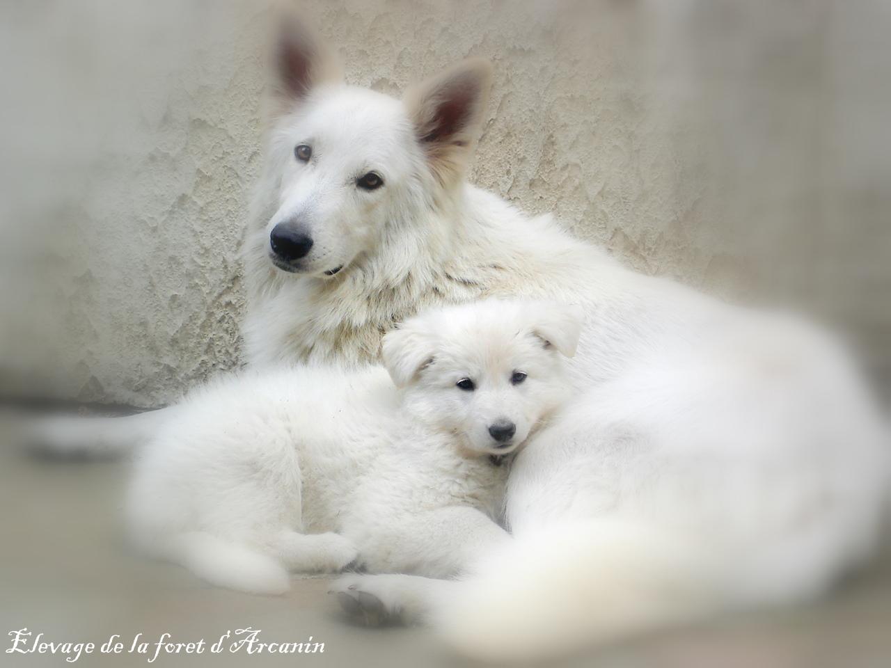 ALTHEA et sa fille